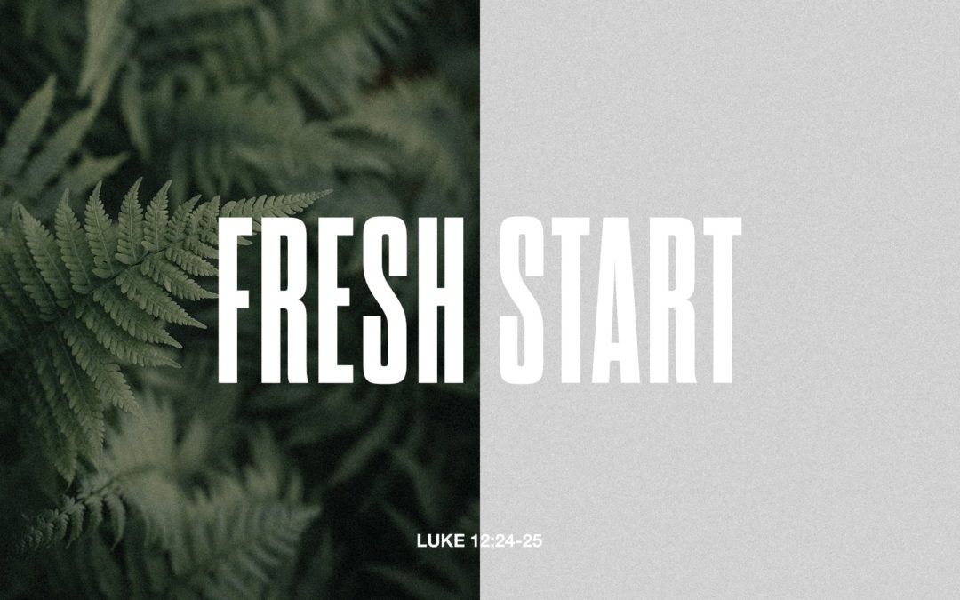 Fresh Start – Part 4